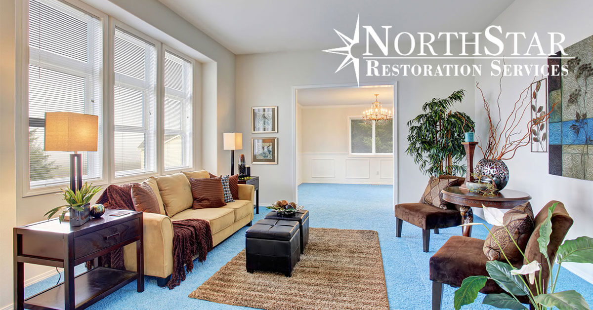 carpet cleaning in Stevens Point, WI