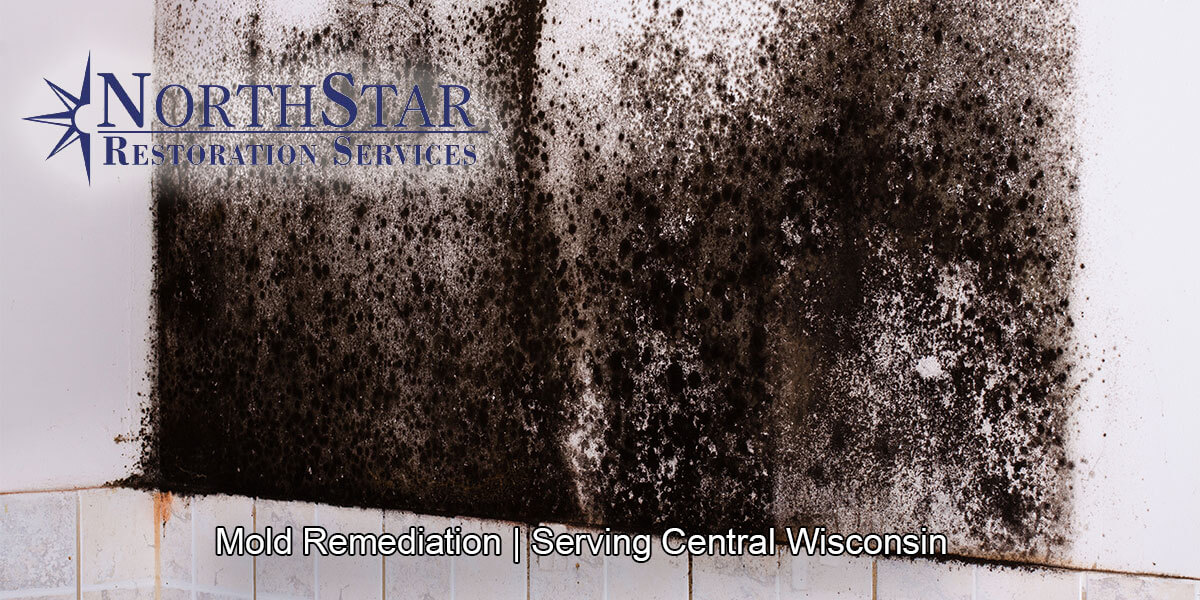 Professional black mold remediation in Irma, WI