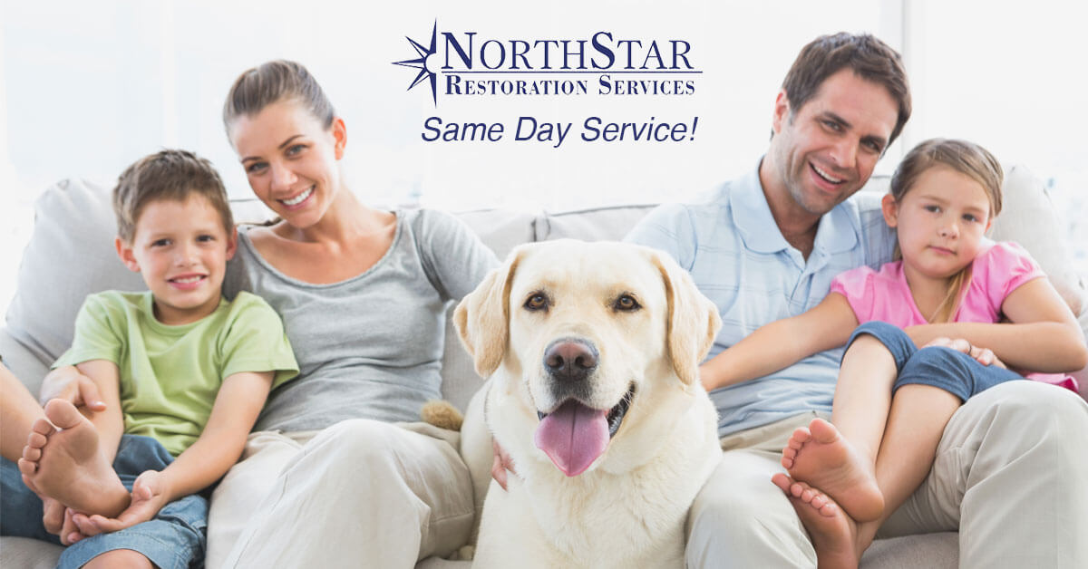 Furniture Cleaning in Rosholt, WI