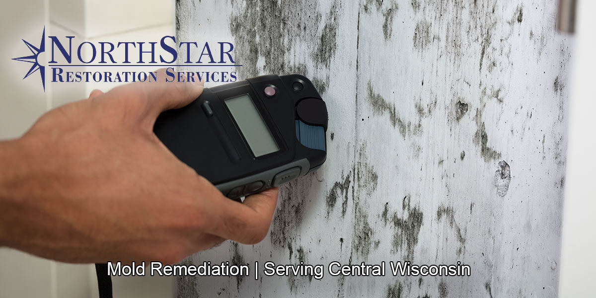 Professional black mold remediation in Mosinee, WI